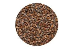 Солод ячменный Шоколадный EBC 900 (Курский солод) 1 кг